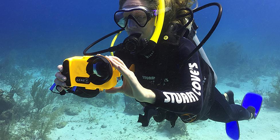 Bagaimana Cara Mendapatkan Gambar Yang Bagus di Bawah Air